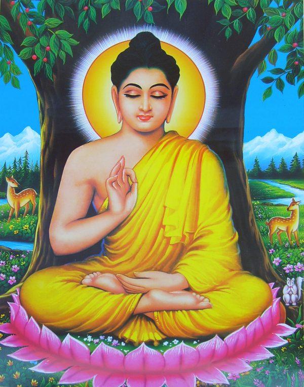 Documentary on Buddhism